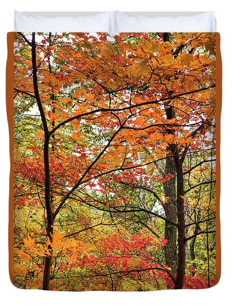 Duvet Cover featuring the photograph Autumn Splendor Fall Colors Leaves And Trees by Dan Carmichael