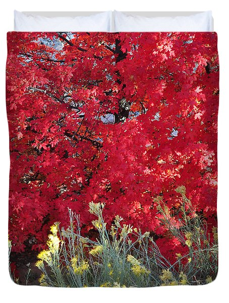 Autumn Splendor In Zion National Park Duvet Cover
