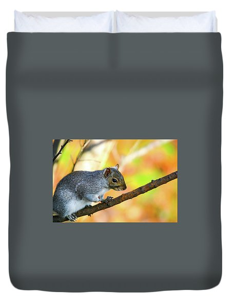 Duvet Cover featuring the photograph Autumn Squirrel by Karol Livote