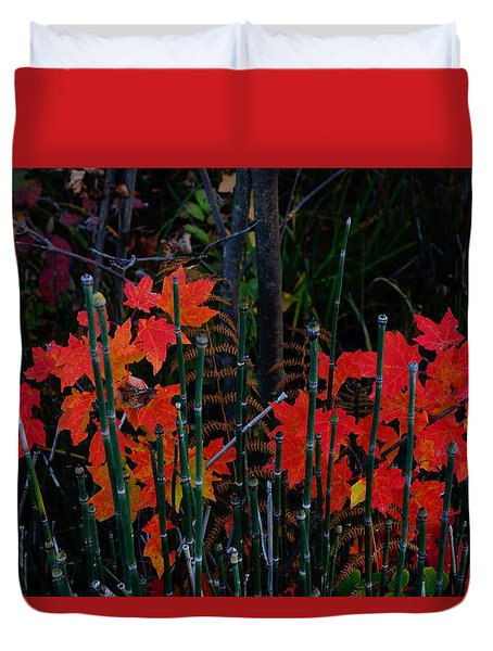 Duvet Cover featuring the photograph Autumn by Steven Clipperton