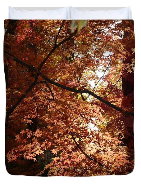 Autumn Sunshine Poster Duvet Cover by Carol Groenen