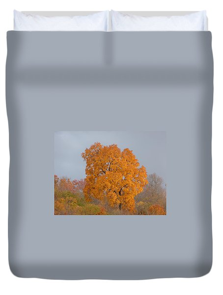 Autumn Tree Duvet Cover by Donald C Morgan