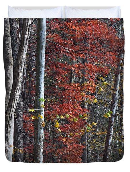 Autumn Trees 8261c Duvet Cover