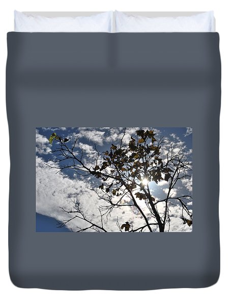 Autumn Yellow Back-lit Tree Branch Duvet Cover
