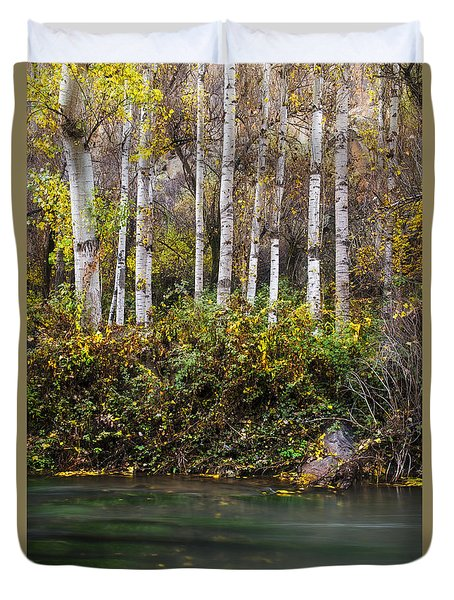 Autumnal Birches Duvet Cover by Yuri Santin