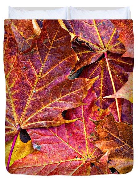 Autumnal Carpet Duvet Cover by Meirion Matthias
