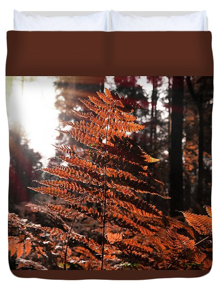 Autumnal Evening Duvet Cover