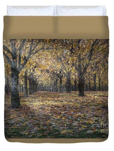 Duvet Cover featuring the photograph Autumns Strokes by Bruno Santoro