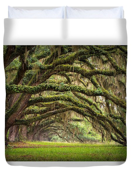 Avenue Of Oaks - Charleston Sc Plantation Live Oak Trees Forest Landscape Duvet Cover