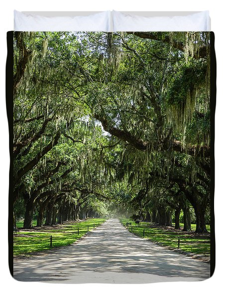 Avenue Of Oaks Duvet Cover