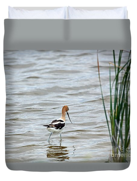 Avocet  Duvet Cover