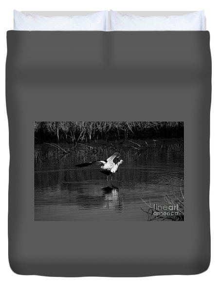 Avocet Courtship Dance 26x40 Inches Duvet Cover