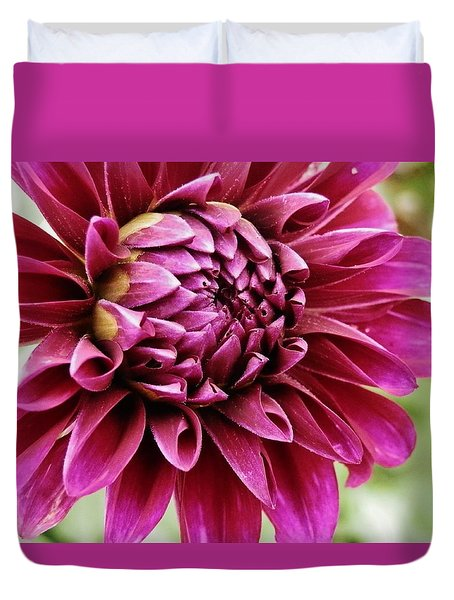 Awesome Dahlia Duvet Cover by VLee Watson