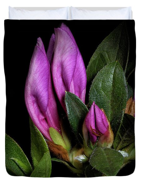 Duvet Cover featuring the photograph Azalea Buds by Richard Rizzo