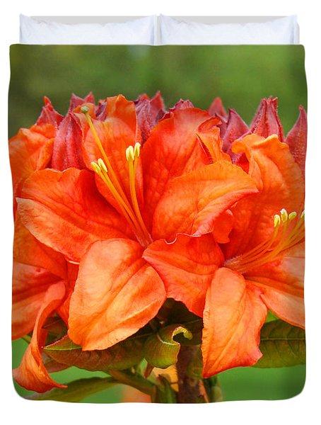 Azaleas Orange Red Azalea Flowers 11 Botanical Giclee Art Baslee Troutman Duvet Cover by Baslee Troutman
