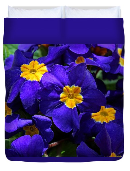 Duvet Cover featuring the photograph Azure Primrose by Michiale Schneider