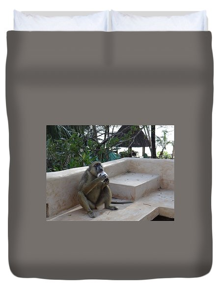 Baboon With A Sweet Tooth Duvet Cover by Exploramum Exploramum