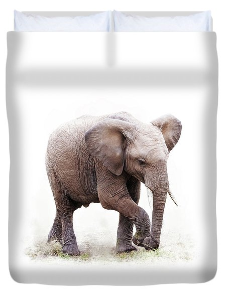 Baby African Elephant Isolated On White Duvet Cover