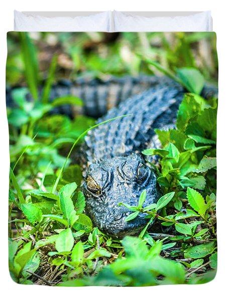Baby Alligator Duvet Cover
