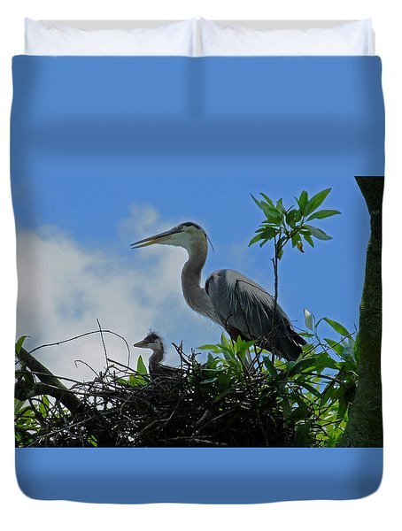 Baby And Mom Great Blue Heron Duvet Cover