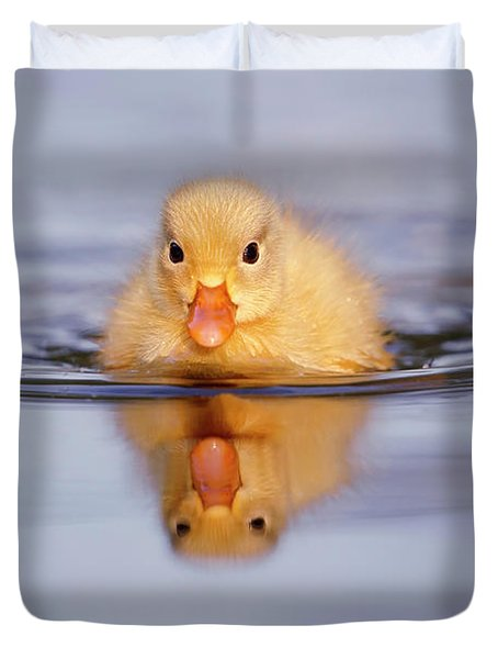 Baby Animals Series - Yellow Duckling Duvet Cover