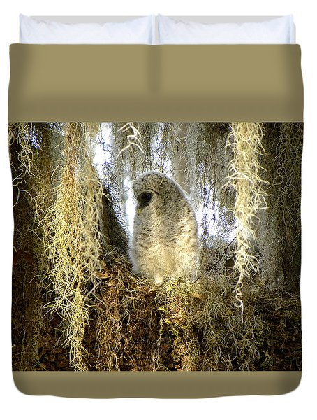 Baby Barred Owl 000 Duvet Cover