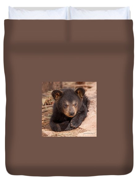 Duvet Cover featuring the photograph Baby Bear Portrait by Laurinda Bowling