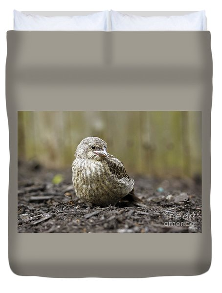 Duvet Cover featuring the photograph Baby Bird by Denise Pohl
