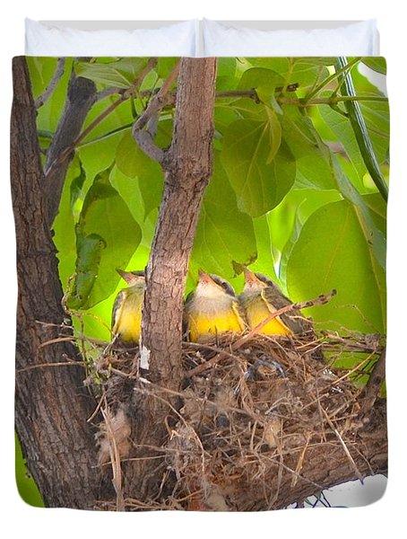 Baby Birds Waiting For Mom Duvet Cover