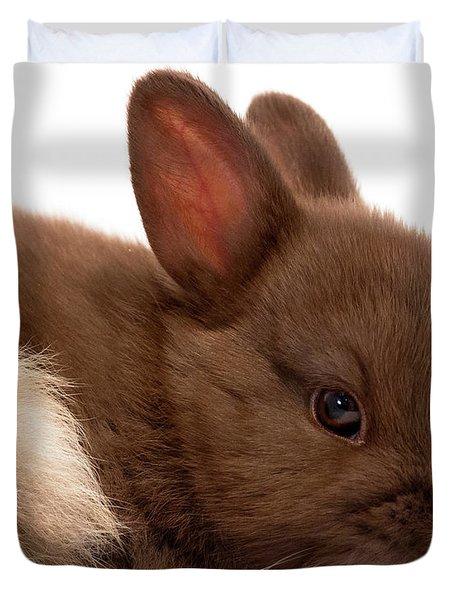 Baby Bunny  #03074 Duvet Cover