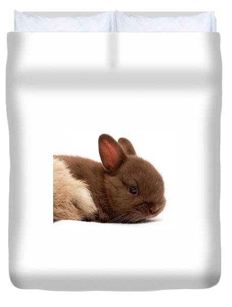 Baby Bunny  #03074 Duvet Cover