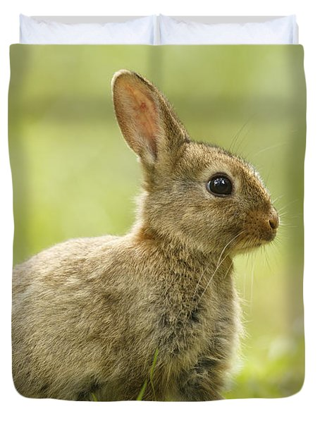 Baby Bunny In The Grass Duvet Cover
