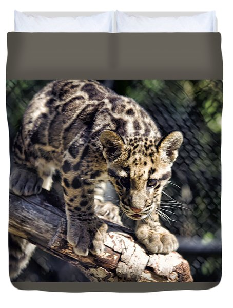 Baby Clouded Leopard Duvet Cover