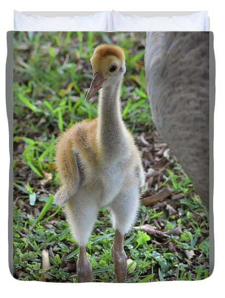 Baby Crane At A Month Old Duvet Cover