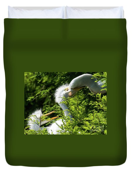 Baby Egrets Being Feed Duvet Cover