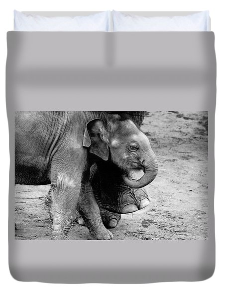 Baby Elephant Security Duvet Cover