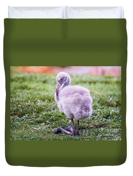 Baby Flamingo Sitting Duvet Cover