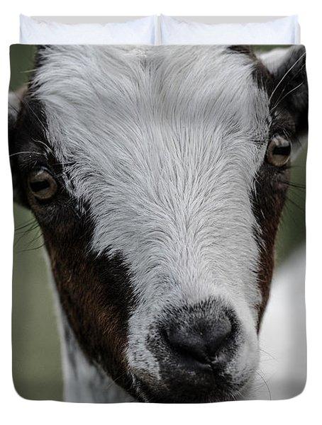 Baby Goat Duvet Cover