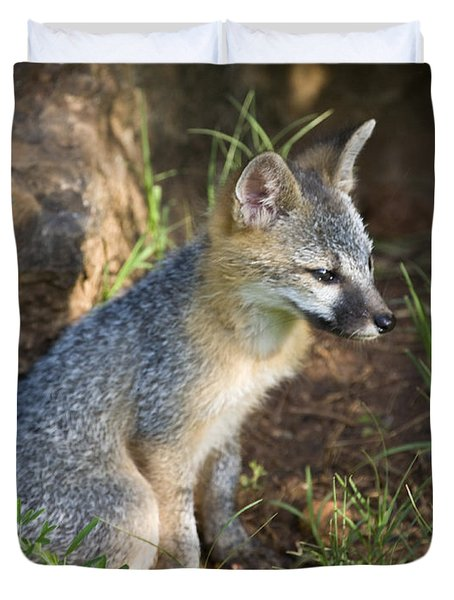 Baby Gray Fox Resting On Bluff Side Duvet Cover by Michael Dougherty