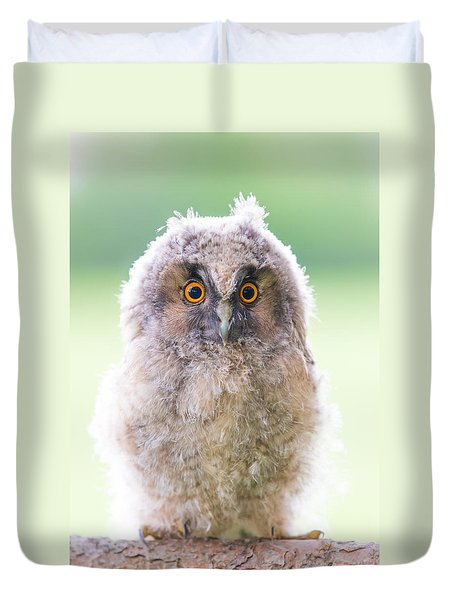 Baby Long-eared Owl Duvet Cover by Janne Mankinen
