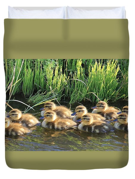 Duvet Cover featuring the photograph Baby Mallards by Lynn Hopwood