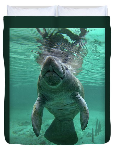 Baby Manatee Duvet Cover by Tim Fitzharris
