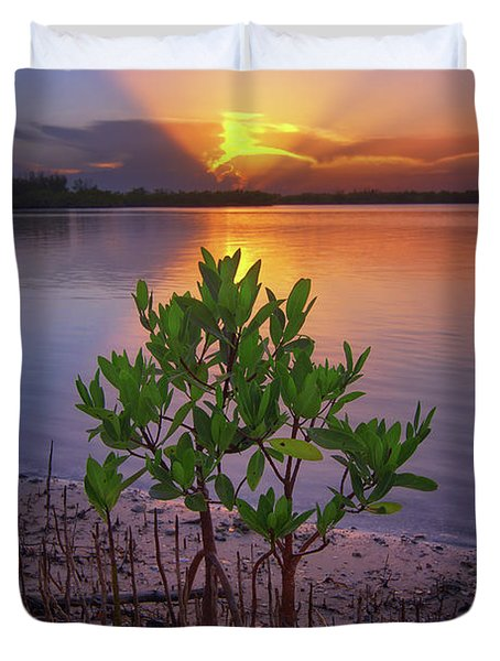 Baby Mangrove Sunset At Indian River State Park Duvet Cover
