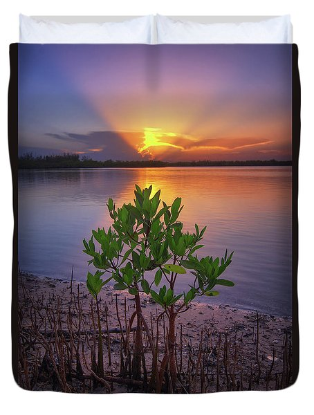 Duvet Cover featuring the photograph Baby Mangrove Sunset At Indian River State Park by Justin Kelefas