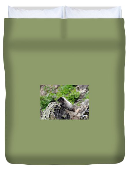 Baby Marmot Duvet Cover by Rebecca Parker