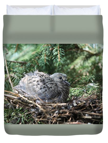 Baby Morning Dove Duvet Cover
