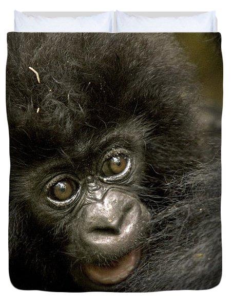 Baby Mountain Gorilla  Duvet Cover by Ingo Arndt
