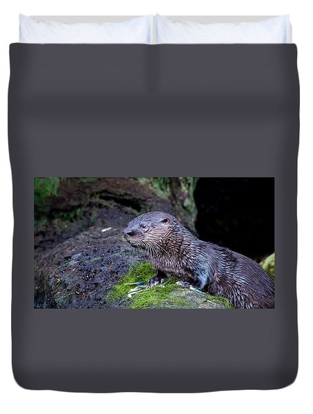 Duvet Cover featuring the photograph Baby Otter by Kelly Marquardt