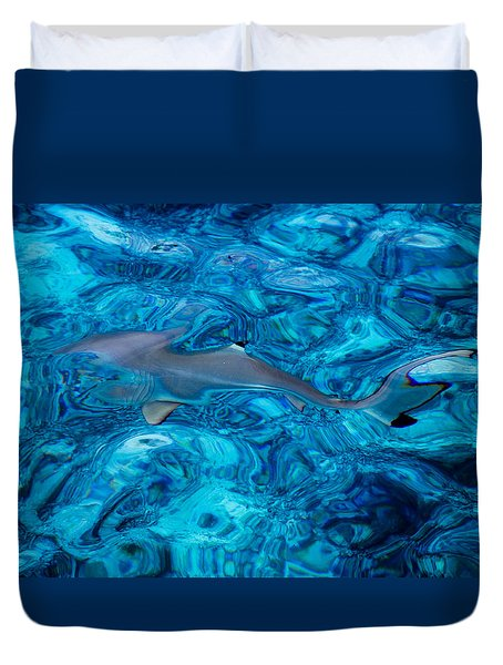 Baby Shark In The Turquoise Water. Production By Nature Duvet Cover