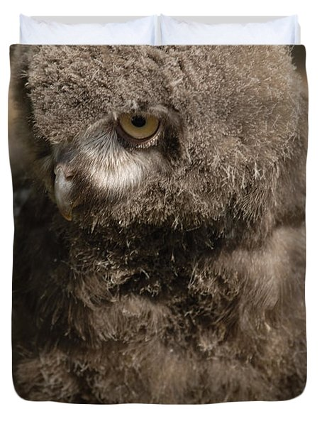 Duvet Cover featuring the photograph Baby Snowy Owl by JT Lewis